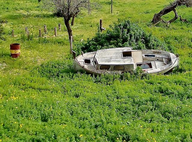 Boat Aground Outside Palma, Mallorca