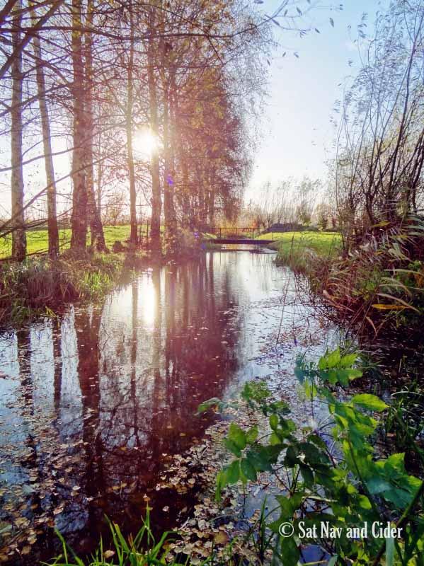 Menneweg Pond, Kalken, Belgium