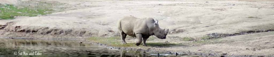 Rhino Safari Park San Diego